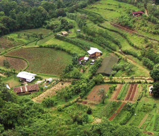 Las Cañadas Cooperative